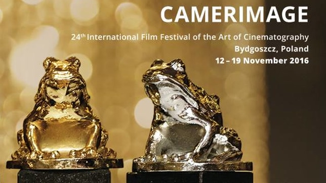 Watch movies competing for Golden Frog at Camerimage Festival
